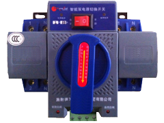 AUTOMATIC CHANGE OVER TRANSFER SWITCH 60A 2P
